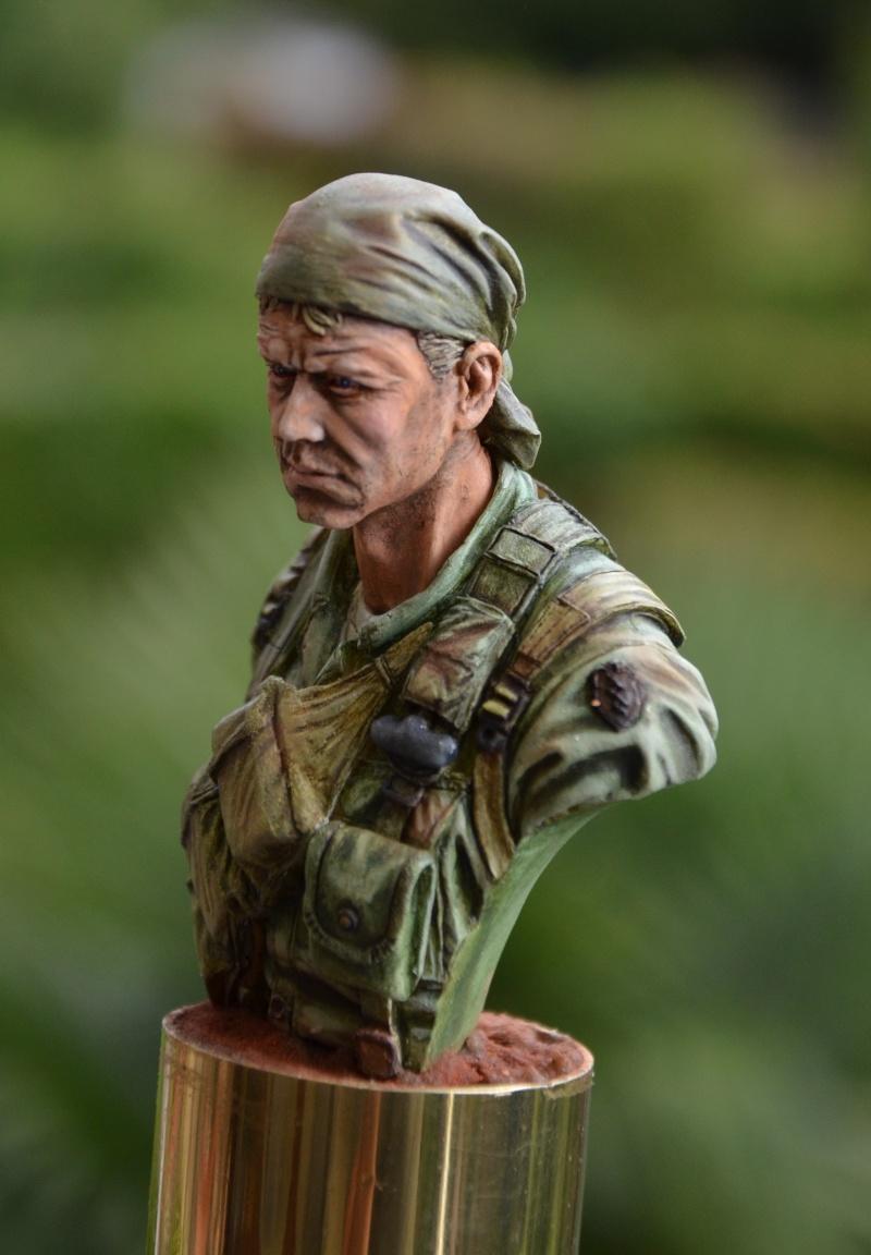 bust Staff Sergeant US Army 25th Infantry Division, Vietnam  Dsc_0027