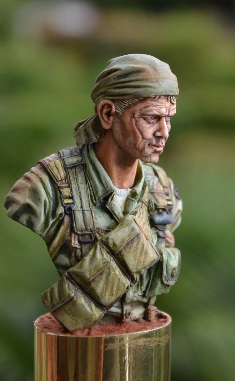 bust Staff Sergeant US Army 25th Infantry Division, Vietnam  Dsc_0028