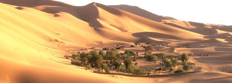 Bladi le musée Arabo Berbere Geotou10