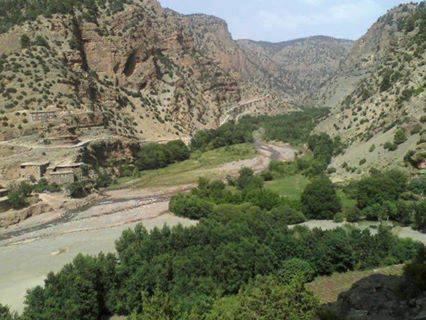 Bladi le musée Arabo Berbere Oasis10