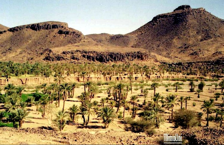 tazarine ! on a tenté de vous la cacher, elle n'a plus de secret ce paradis Amazigh Tazari13