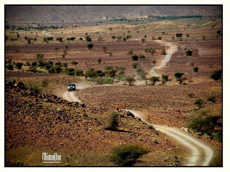 amazigh - Osez aller voir l'Amazigh qui a fait main basse sur oasis palmeraie et ksours Tazari15
