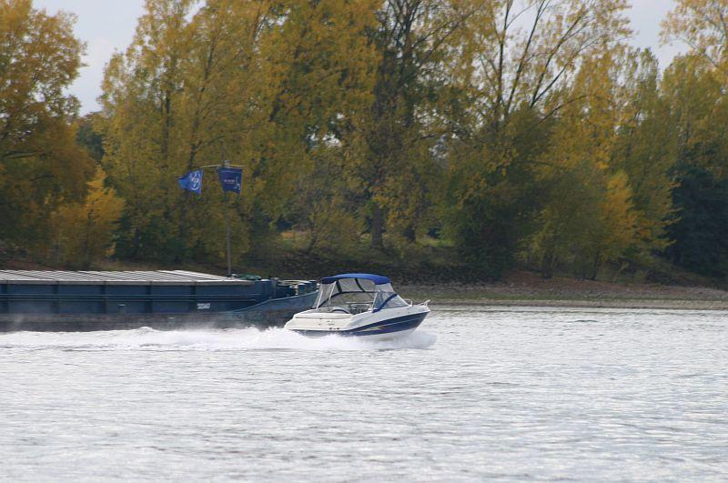 Kleiner Rheinbummel am 21.10.15 in Koblenz und Mondorf 3110
