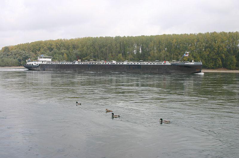 Kleiner Rheinbummel am 21.10.15 in Koblenz und Mondorf 518