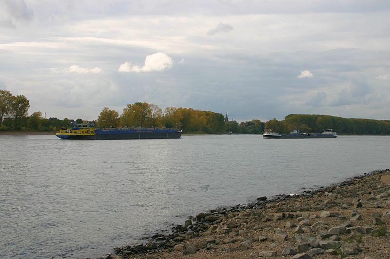 Kleiner Rheinbummel am 21.10.15 in Koblenz und Mondorf 912