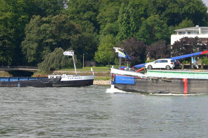 Kleiner Rheinbummel am 31.07.15 in Königswinter und Mondorf Img_3444