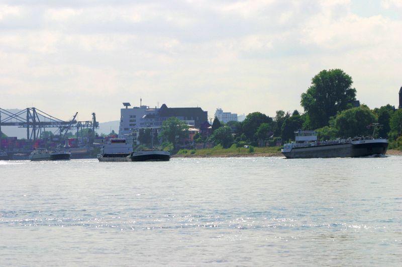 Kleiner Rheinbummel am 31.07.15 in Königswinter und Mondorf Img_3526