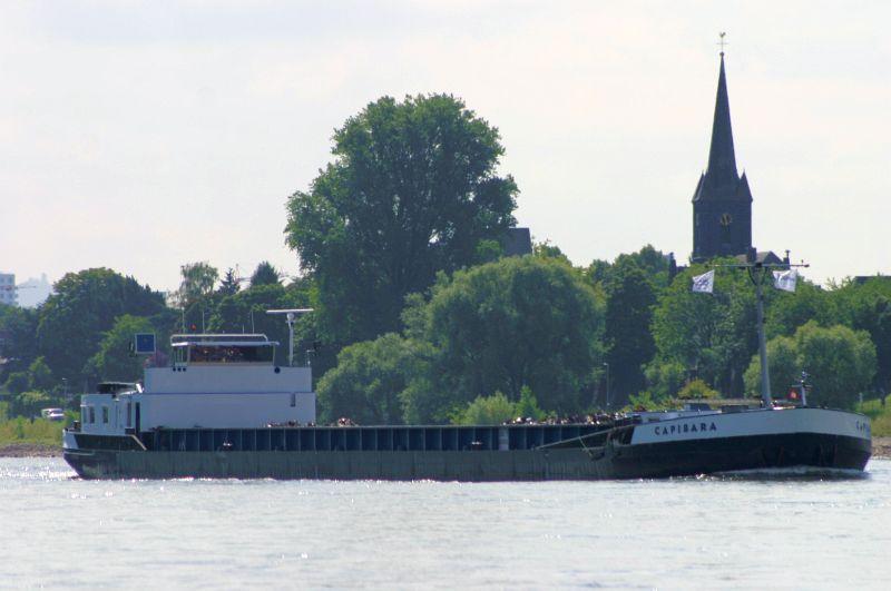 Kleiner Rheinbummel am 31.07.15 in Königswinter und Mondorf Img_3528