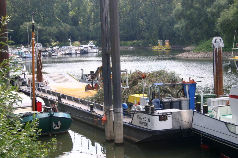 Kleiner Rheinbummel am 31.07.15 in Königswinter und Mondorf Img_3547