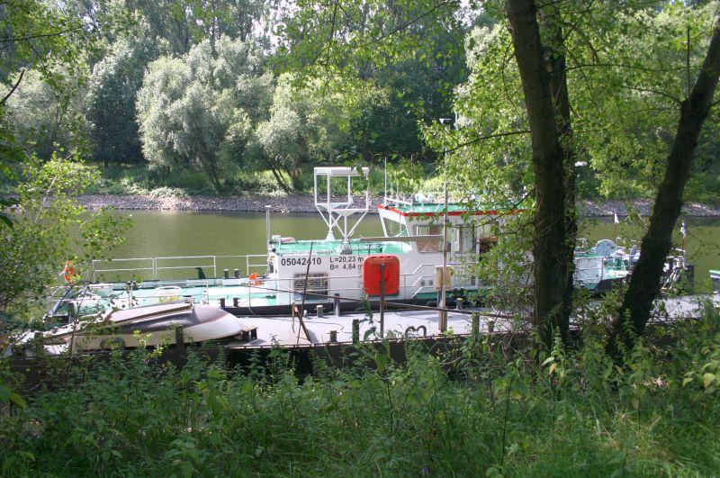 Kleiner Rheinbummel am 31.07.15 in Königswinter und Mondorf Img_3550