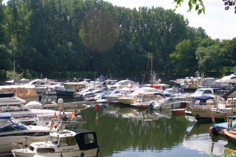 Kleiner Rheinbummel am 31.07.15 in Königswinter und Mondorf Img_3558