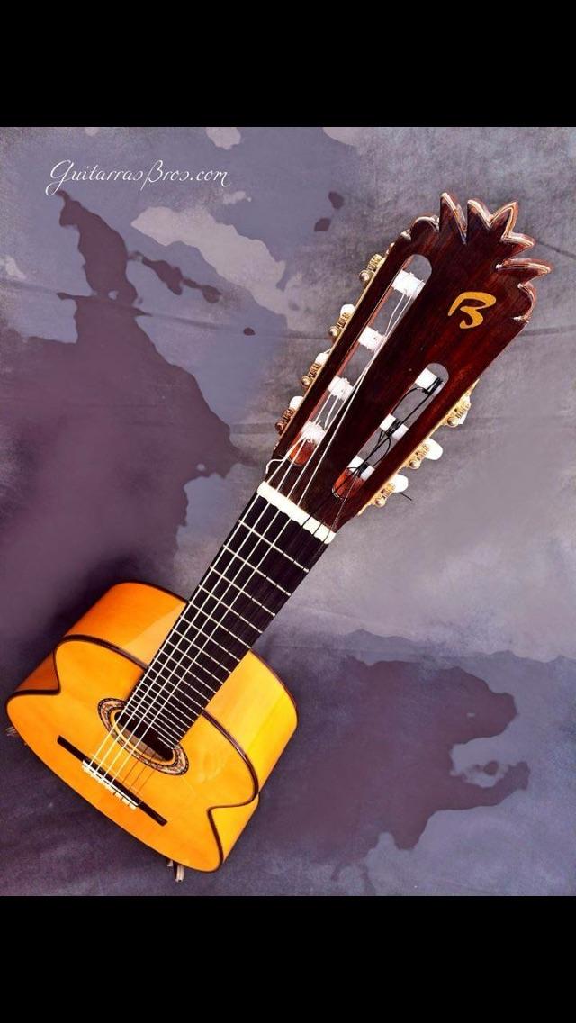 cordes - Guitare à 7 cordes Image16