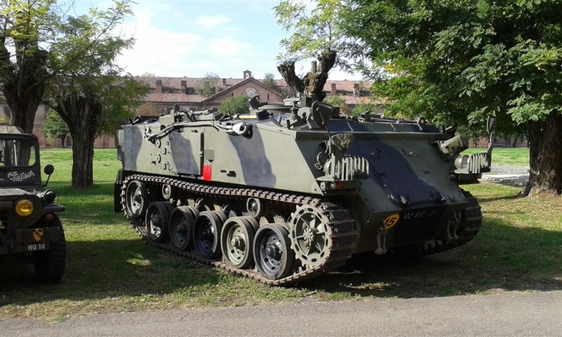 Raduno mezzi militari - Alessandria 54249510