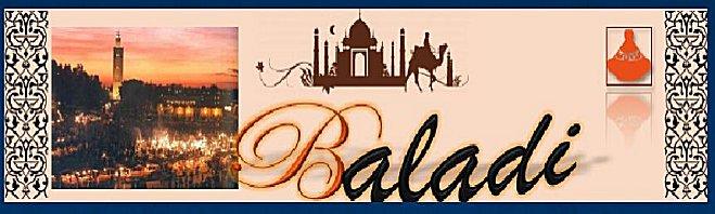 Site forum investigation Baladi10