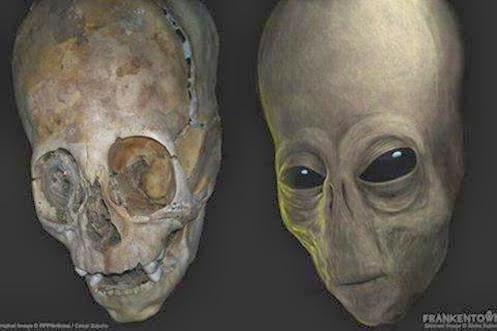 Première analyse de l'ADN du crâne allongé de Paracas révélée – avec des résultats incroyables  Aliene10