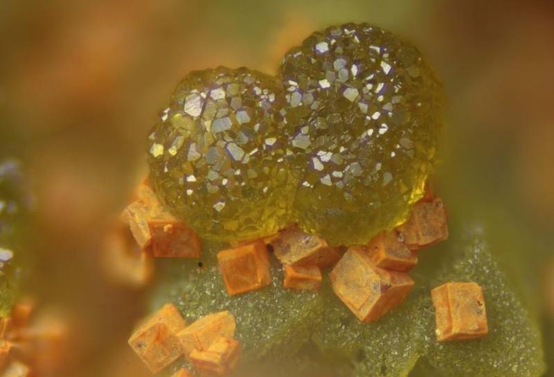 Sublimes photos de gemmes rares - Page 2 Cyrilo10