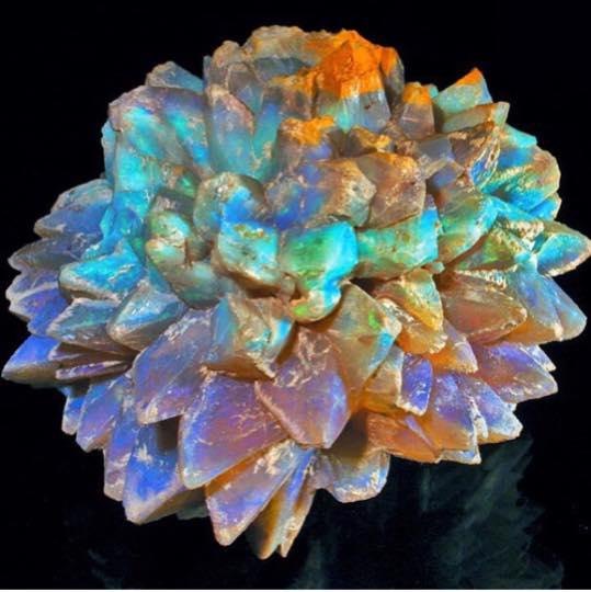Sublimes Opales Pineap10