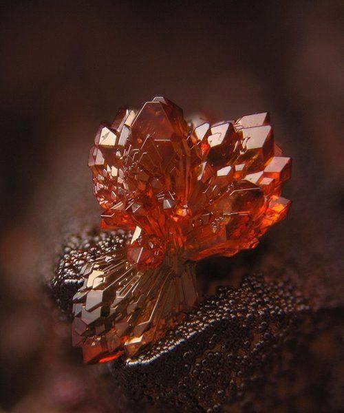 Sublimes photos de gemmes rares - Page 2 Streng10