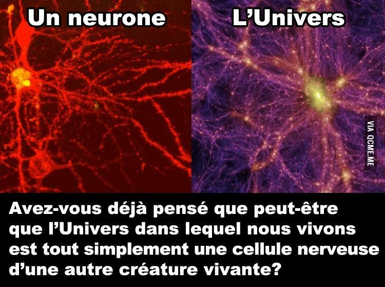 L'univers... un neurone ? Univer10