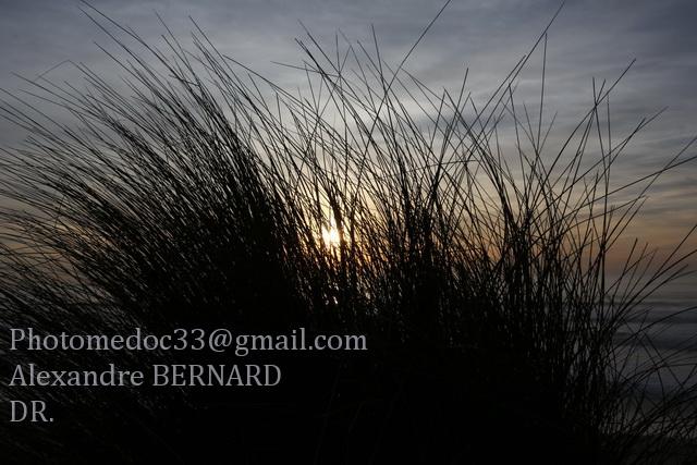 Le Littoral Médocain vu par Alexandre Bernard 1v4b6815