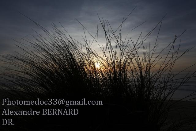 Le Littoral Médocain vu par Alexandre Bernard 1v4b6910