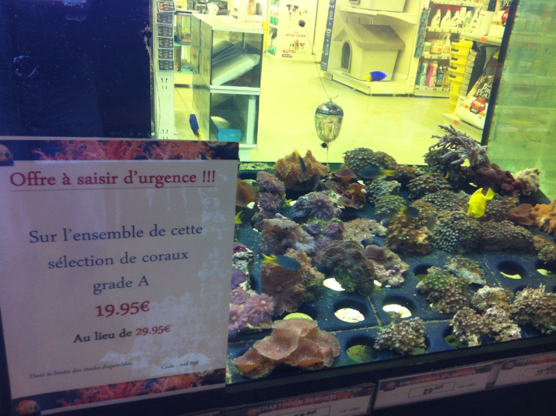 Animalis Poitiers Sud  Img_3615