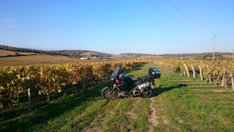 Vos plus belles photos de moto - Page 6 Dsc_0010