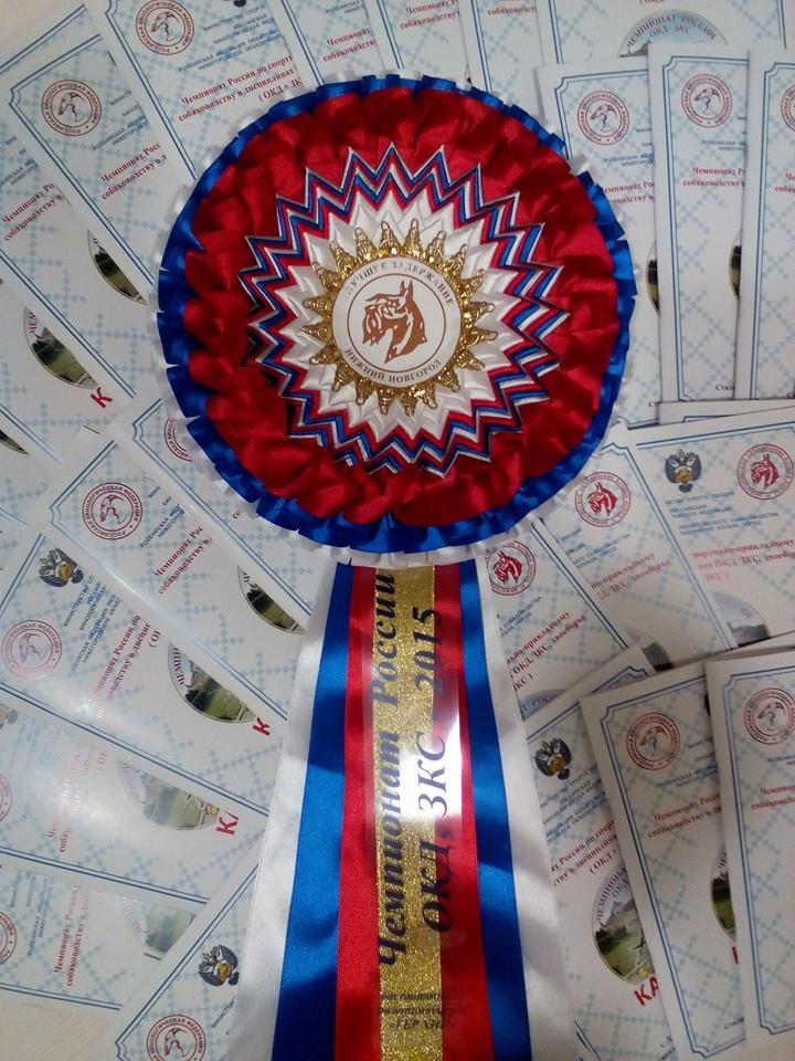 11-14 сентября Чемпионат России по ОКД,ЗКС мини ОКД, двоеборье г.Дзержинск, Нижегородская  область  11986911