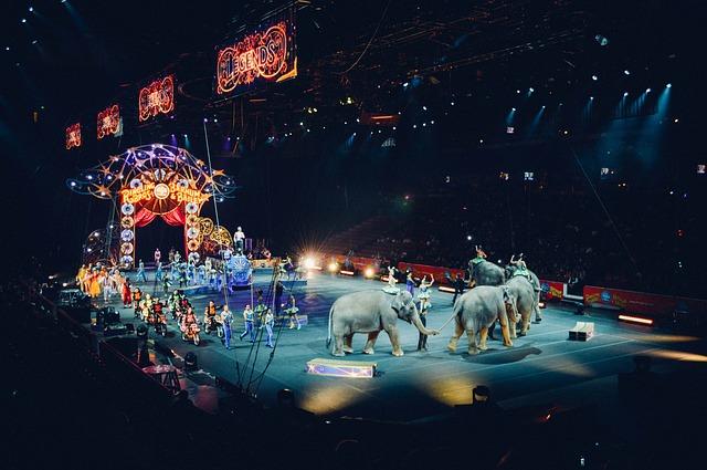 Le cirque ... - Page 2 B43110