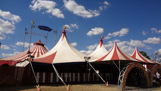 Le cirque ... - Page 2 B43210