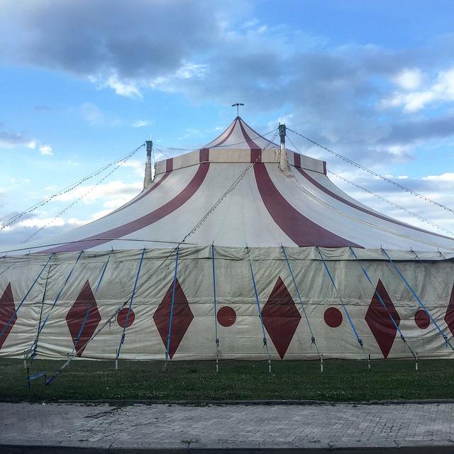 Le cirque ... - Page 2 B43610