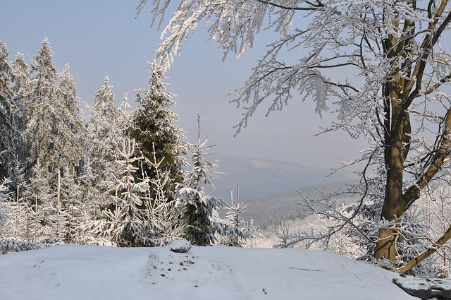 La neige en montagne ... B52110