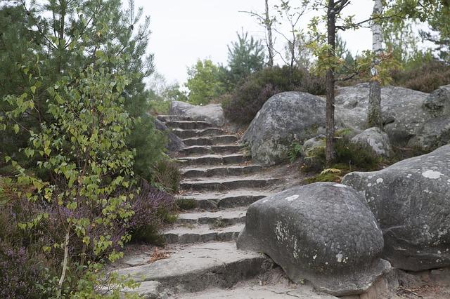 Les roches, les pierres ... D50710