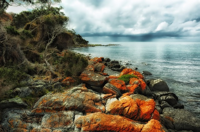 Les roches, les pierres ... D52010