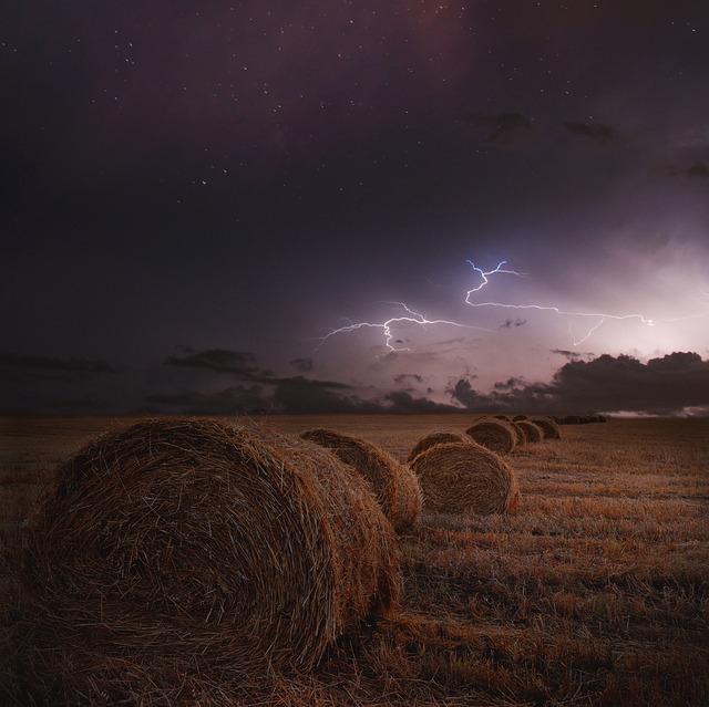 L'orage ~~ Les éclairs - Page 2 E55610