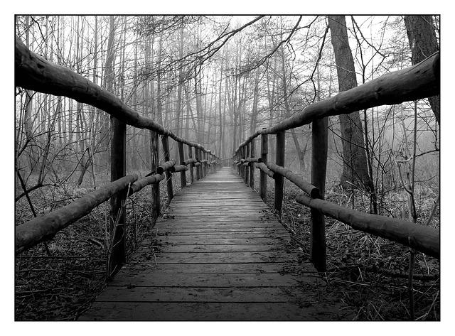 Ponts, quais ... - Page 2 G41410