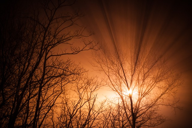 Images coucher de soleil - Page 4 L1610