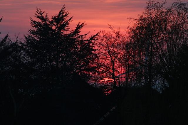 Images coucher de soleil - Page 4 L2310