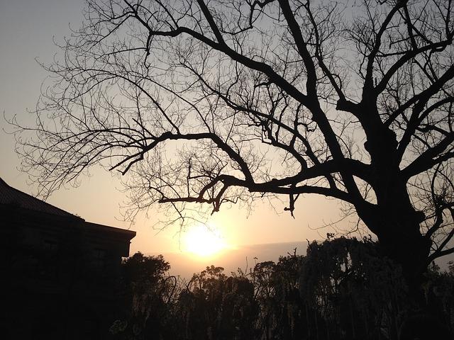 Images coucher de soleil - Page 4 L4010
