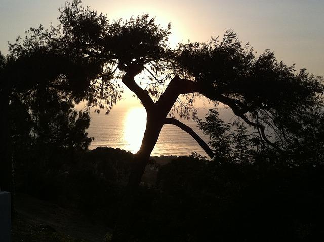 Images coucher de soleil - Page 4 L4510