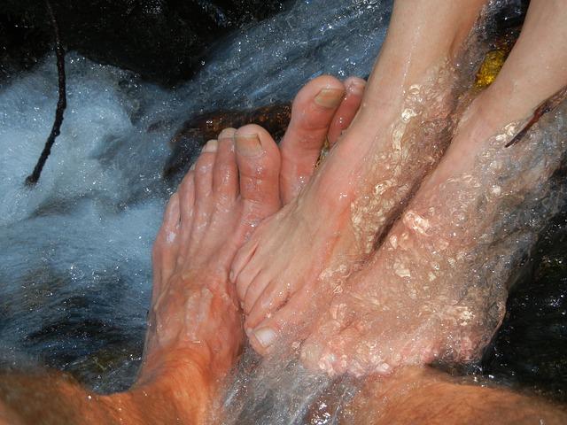 Les pieds  N1410