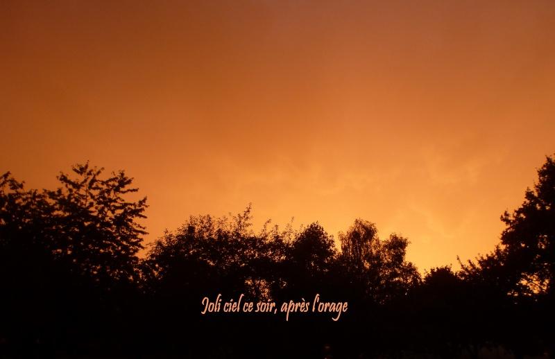 Le ciel et ses couleurs P1080911