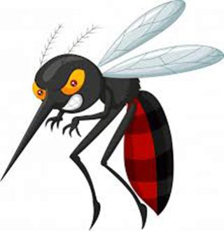"""""""El mosquito puñetero"""" """"Décimas jocosas"""" Copy_j12"""