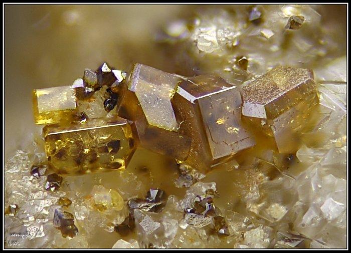 Fossiles descloizite-vanadinite Maroc  Desclo10