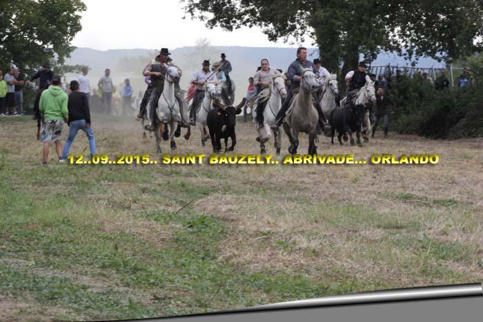 12...09...2015..Saint Bauzely  Abrivave _mg_0011