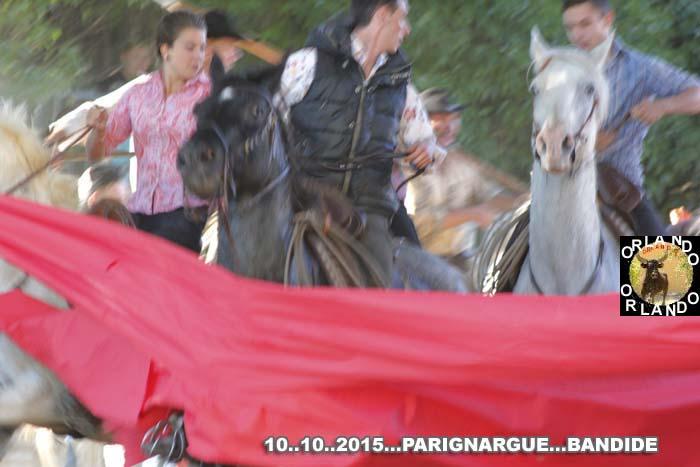 Bandide  du  10..10..2015... Parignargue  _mg_0022