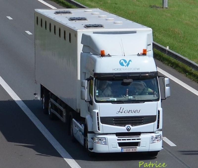 Transports de chevaux - Page 6 80pp10