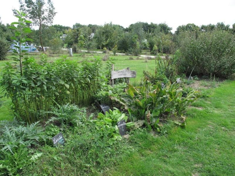 """Le camping """"la fontaine du Hallate""""  (56) Jardin11"""