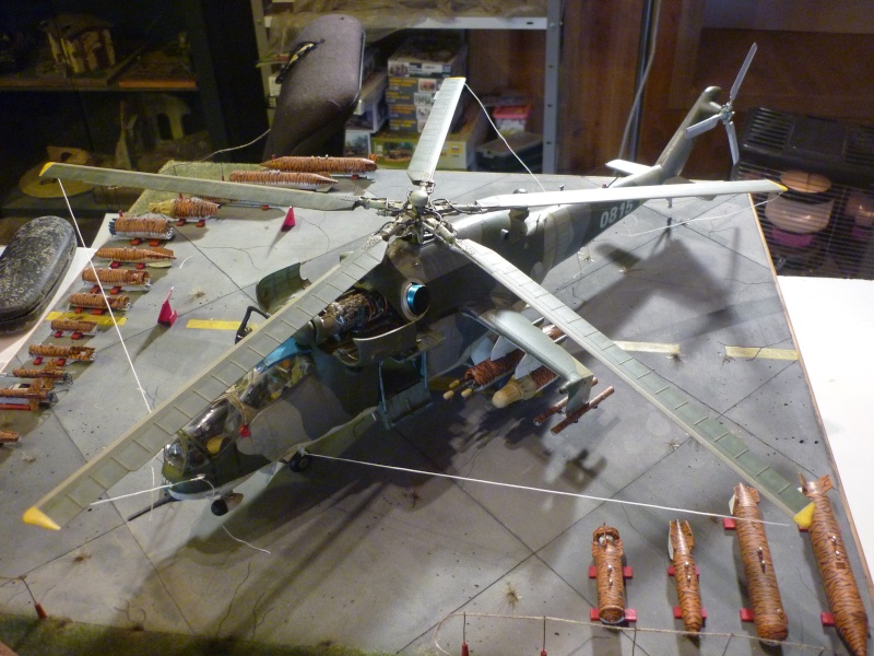 Meeting Tiger meet hélicoptère ; MIL MI 24 HIND E Trumpeter 1/35 et GAZ 66 Eastern Express  -1/35 - Page 2 P1030017