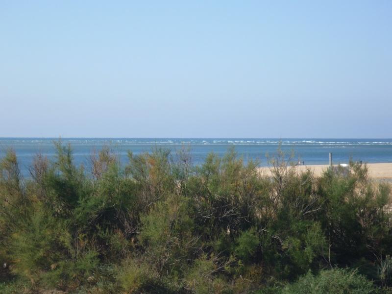 C.R de la petite sortie sur le Bassin Balade17